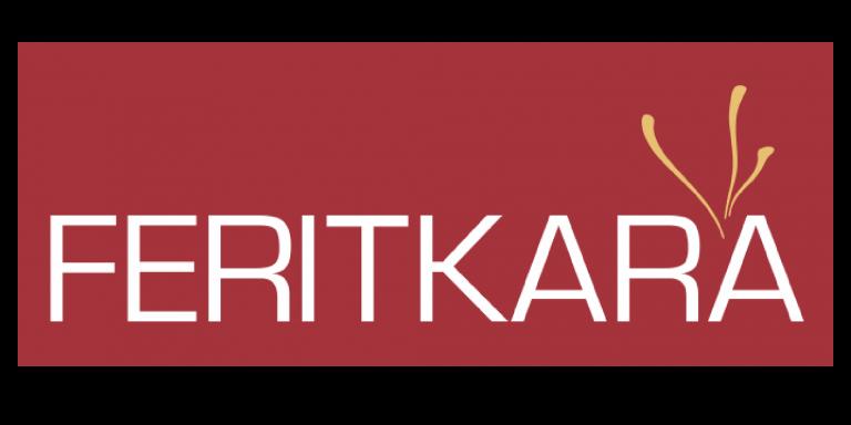 زعفران فریت کارا به دیجیتال مارکتینگ RIT اعتماد کرد.